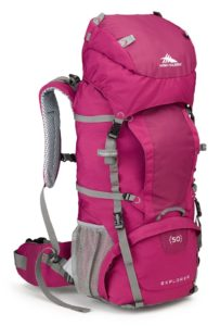 High Sierra Women's Backpack